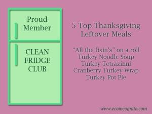 Clean Fridge Club