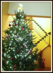 This authentic Douglas Fir fills our foyer with the spirit of the season.