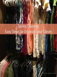 Spring cleaning, Easy steps to organize your closet from Eco Incognito